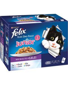 Felix Pouch Elke Dag Feest Kitten 12x100 gr