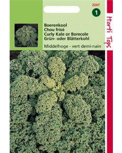 Hortitops Boerenkool Vert Demi-Nain / Middelhoge Fijne Krul