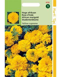 Hortitops Tagetes Erecta Yellow Supreme Fl.Pl.