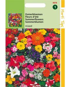 Hortitops Zomerbloemen Gemengd