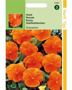 Viola Tricolor Oranjezon