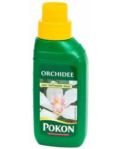 Pokon Orchidee 250 ml
