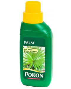 Pokon Palm 250 ml