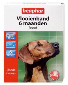 Beaphar Hond 65 Cm Vlooienband Rood