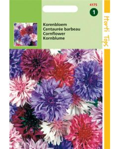 Hortitops Centaurea Cyanus Polka Dot Gemengd