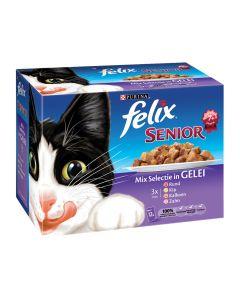 Felix Senior Mix Selectie 12x100 gr