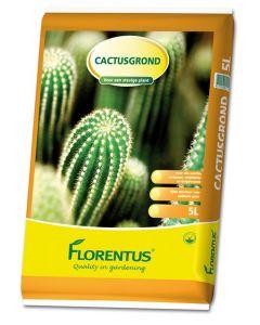 Florentus Ptgr Cactus Vetplant 5l