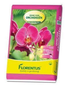 Florentus Ptgr Orchideen 5 Ltr