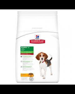 Hills Canine Healthy Development Puppy Medium Kip 12 kg