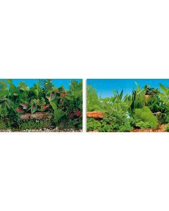 Blu 9049 Poster Plant 100x50 cm