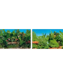 Blu 9046 Poster Plant 80x40 cm