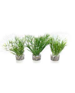 Waterplant Sydeco Nano Green Plant 10 cm